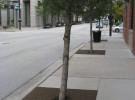 porous tree surround
